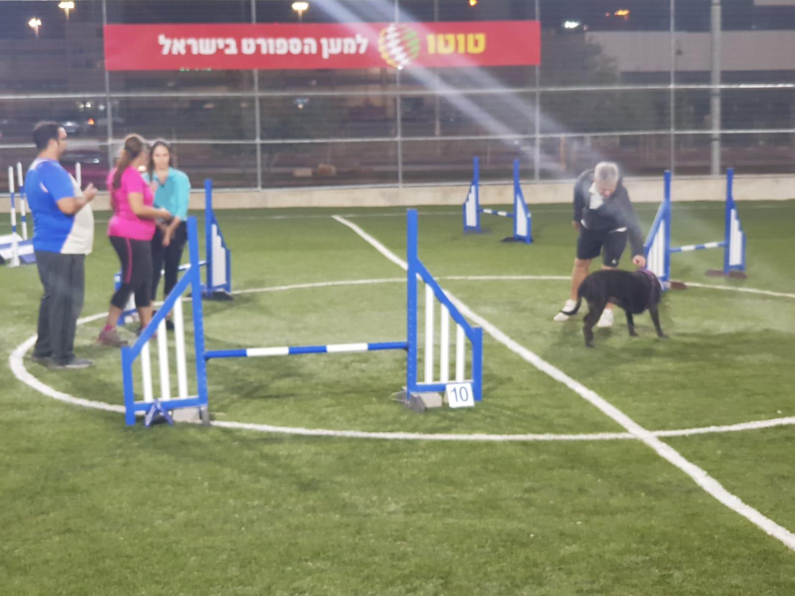 מאמן כלבים עולמי